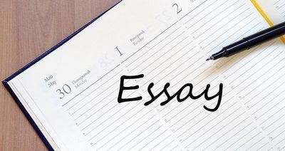 What You must know About 123 Essay  compliment our